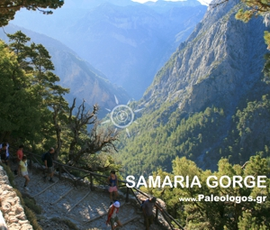 Samaria Gorge Excursion